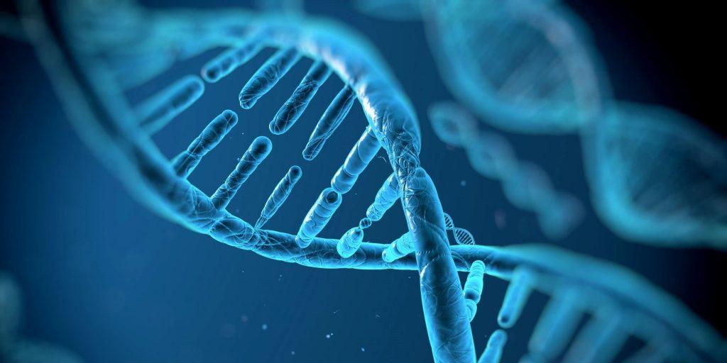 Epigenetics: MTHFR and Genetic Susceptibilities